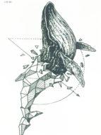 Временная татуировка Кит (геометрия)